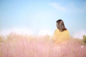 !超大型稻草王国登陆瓜牛公园!11月2日一生必看的粉黛花海秘境同期开幕!